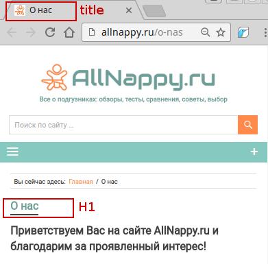 Экспертиза информационного сайта allnappy.ru